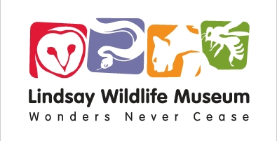 Lindsay Wildlife Museum – Animal/Pet Business/Event – Contra Costa