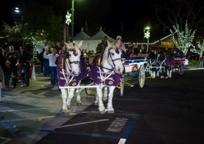 Yountville Festival of Lights 2 - photo cred is Bob McClenahan WEB