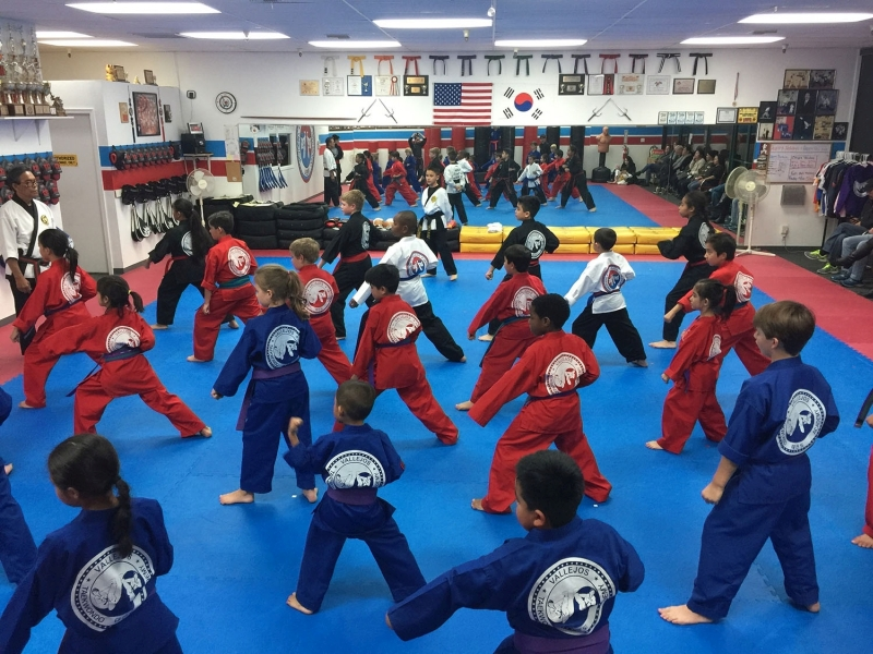 Childrens Activities - Vallejos Tae Kwon Do - Solano